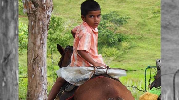 Por qué los niños del campo dejan los estudios?
